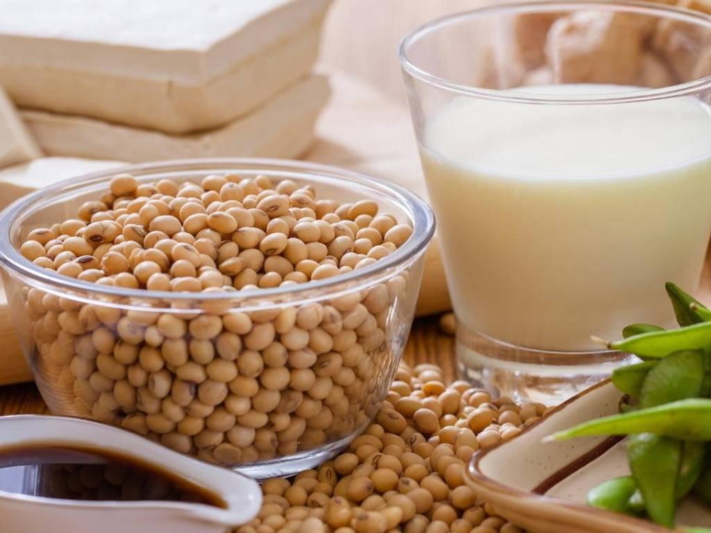 Чем полезно соевое молоко для женщин