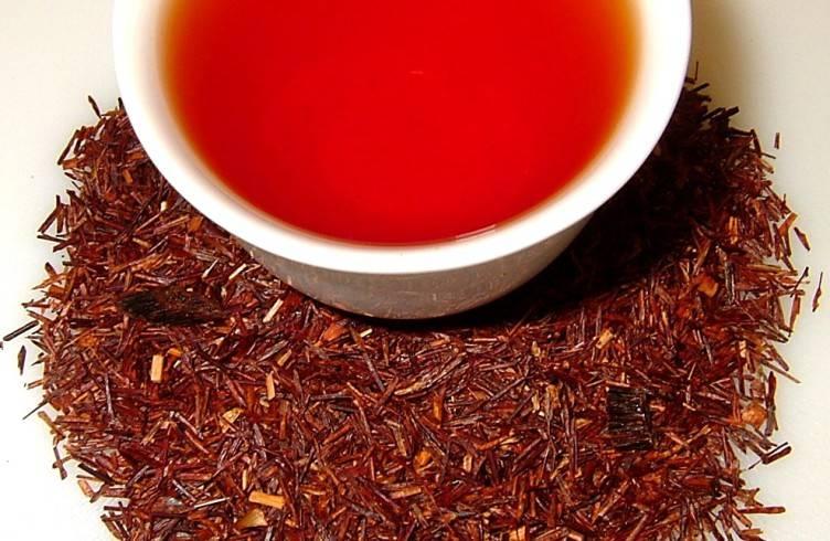 Уникальные свойства чая ройбуш, его применение