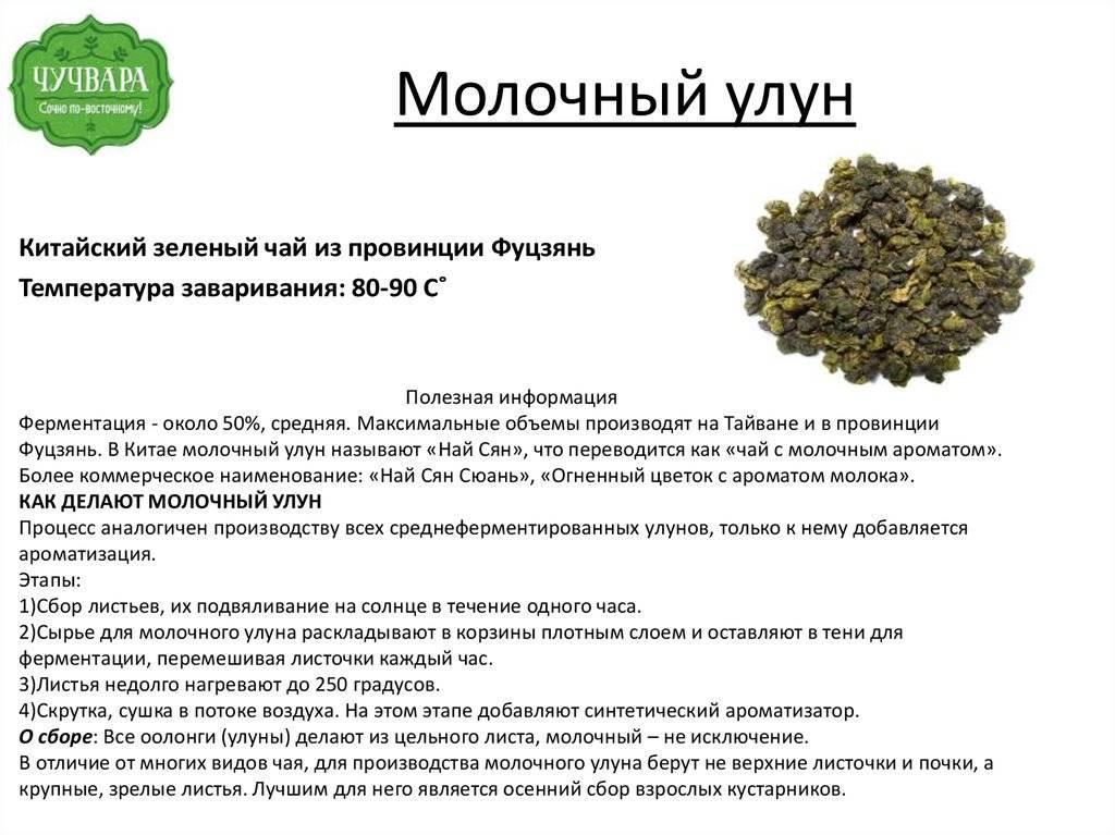 Польза и вред чая молочный улун (оолонг)