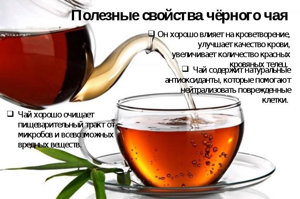 Аристократичный чай с бергамотом: приятный вкус и польза для организма