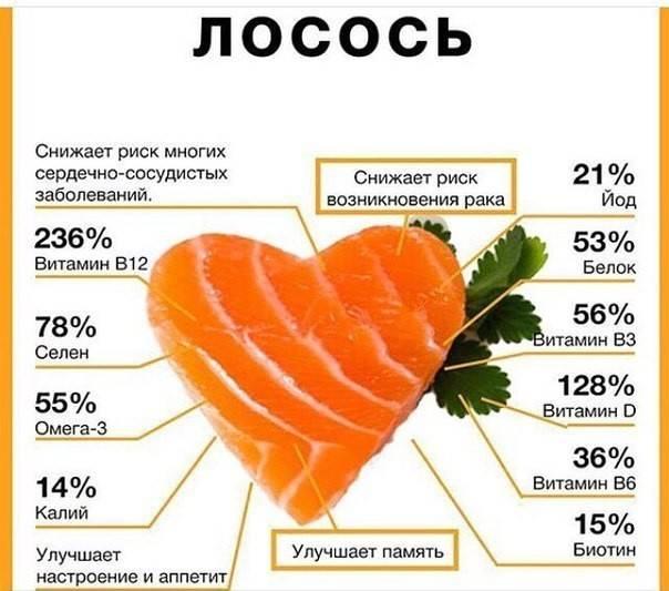 Чем полезен лосось и как его готовить