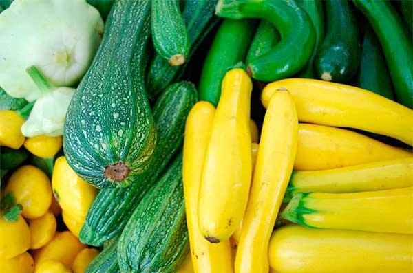 Цуккини: польза и вред для здоровья, состав, рецепты