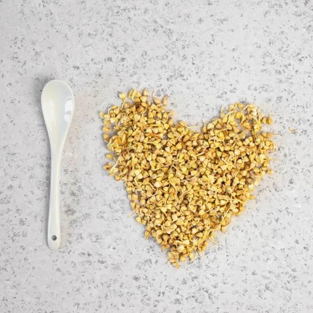Раскрываем все секреты про пользу и вред зеленой гречки для организма — проращивание для здоровой еды
