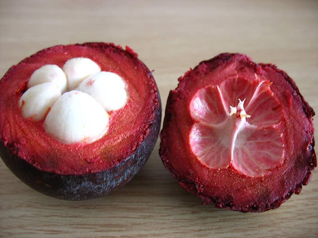 Мангустин: полезные свойства фрукта, фото, калорийность, противопоказания