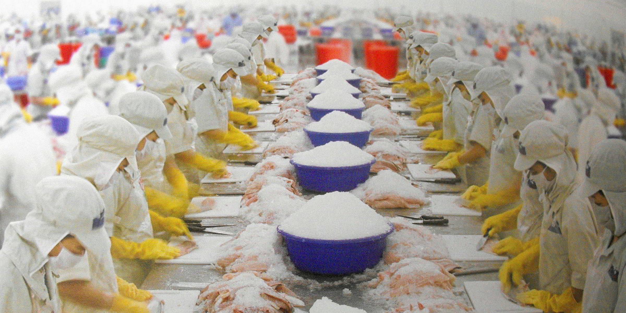 Пангасиус — что это за рыба, её среда обитания, польза и вред