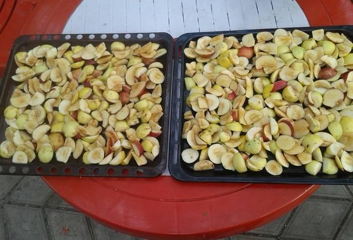 Самый простой способ сушки фруктов. как сушить яблоки в домашних условиях на солнце и воздухе, или в квартире