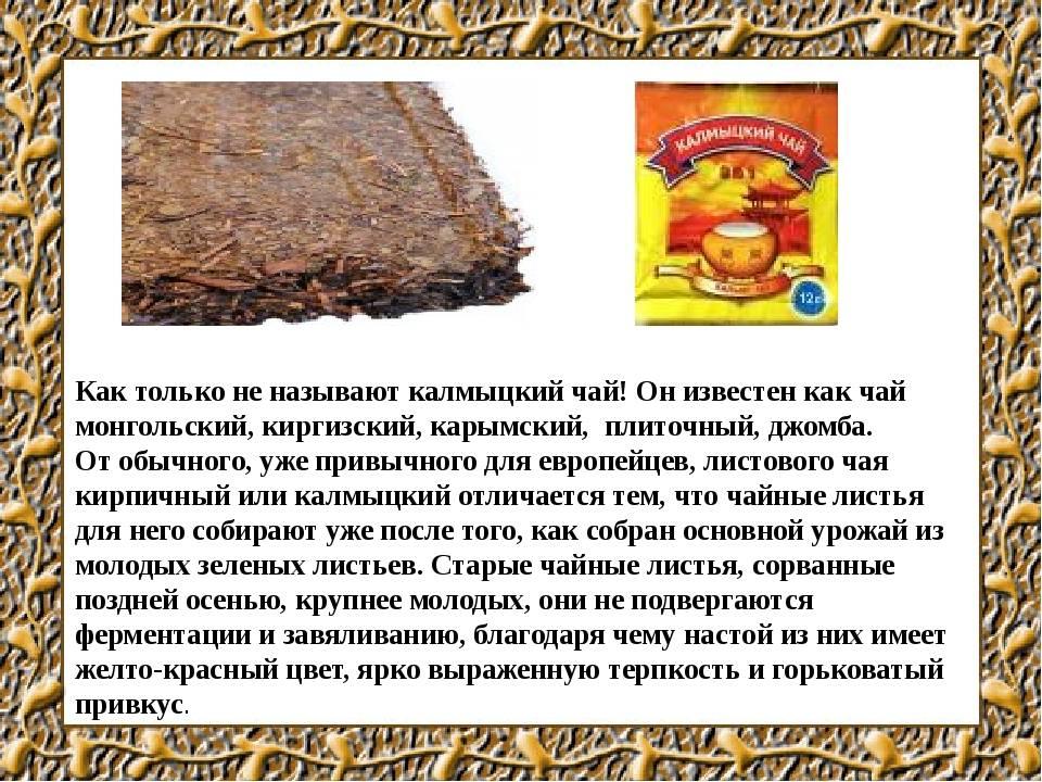 Польза и рецепты калмыцкого чая