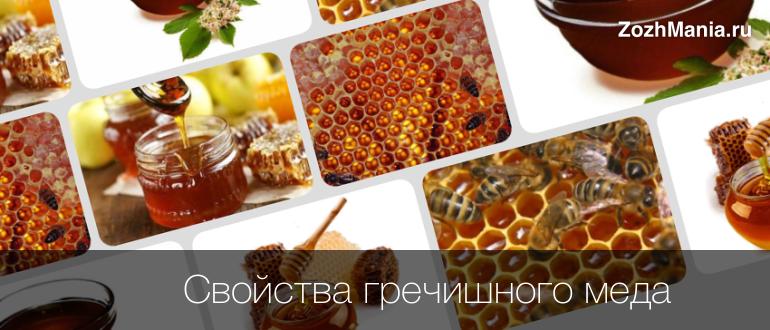 Гречишный мед и его лечебные свойства, противопоказания. проверка на натуральность
