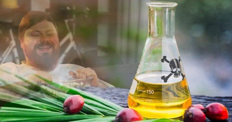 Эксперты ставят точку в разговоре. пальмовое масло: вред и польза