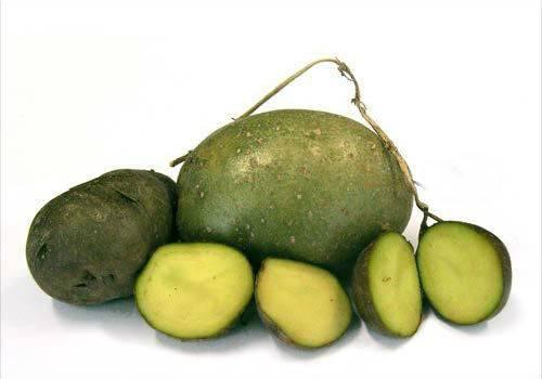 Чем опасен зеленый (неспелый) картофель?