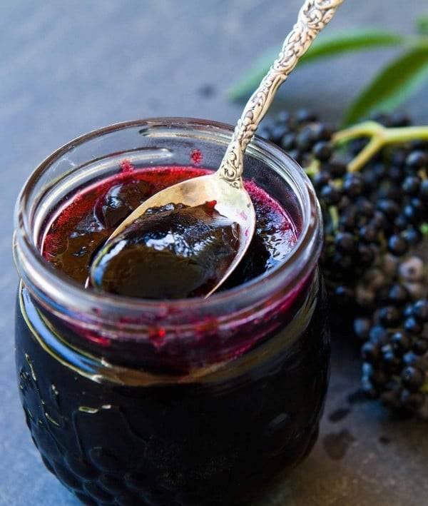 Варенье из бузины черной лечебные свойства