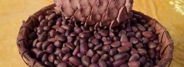 Нужно ли мыть кедровые орешки