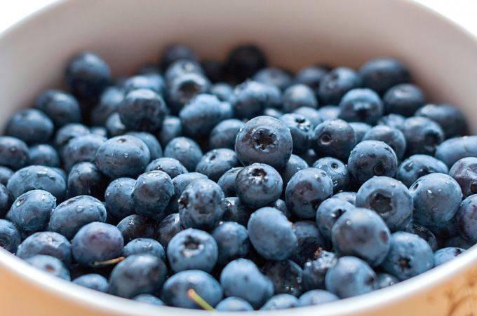 Голубика: польза и вред этой ягоды для нашего организма, кому она противопоказана