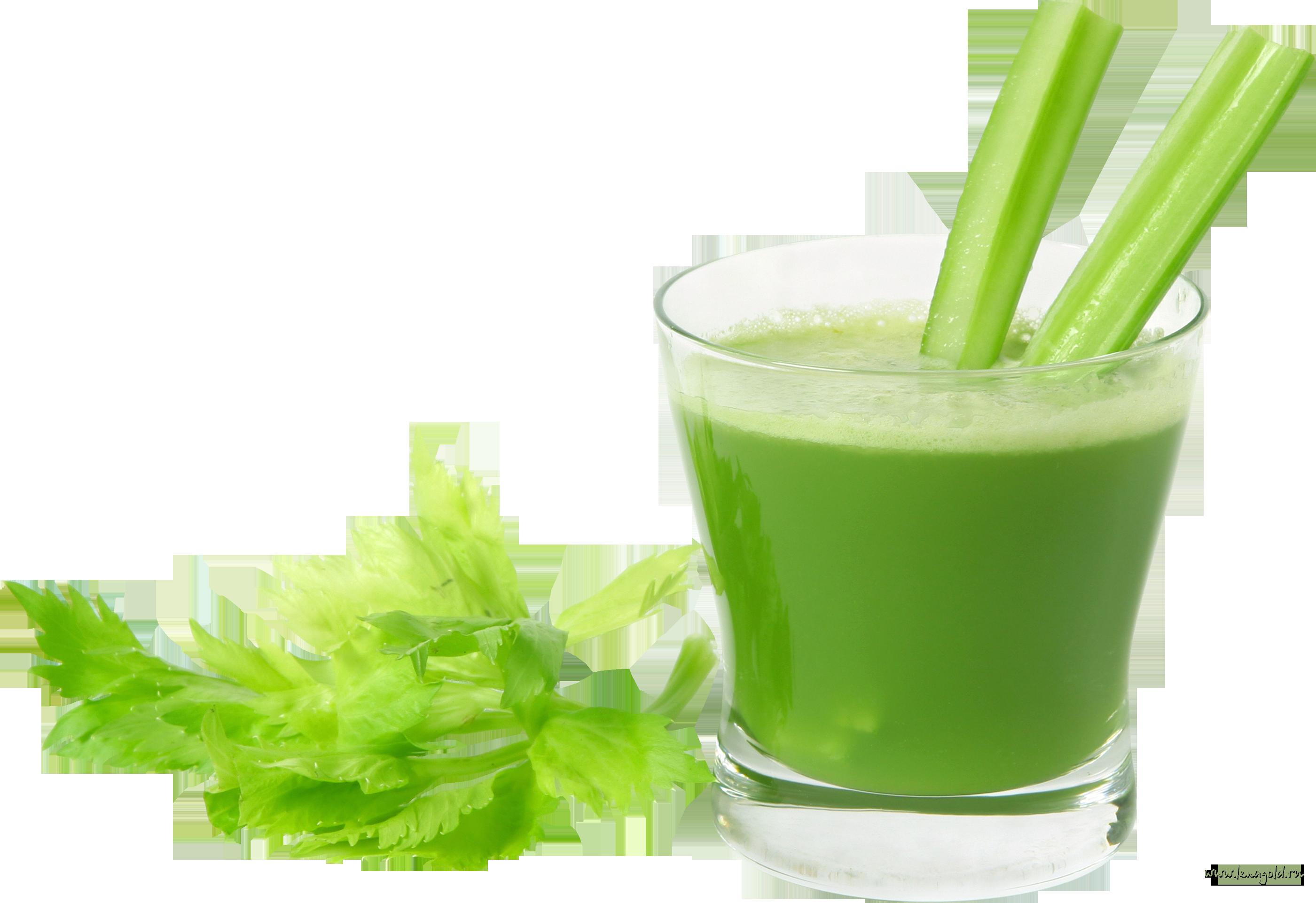 Сок из сельдерея: польза и вред, как принимать