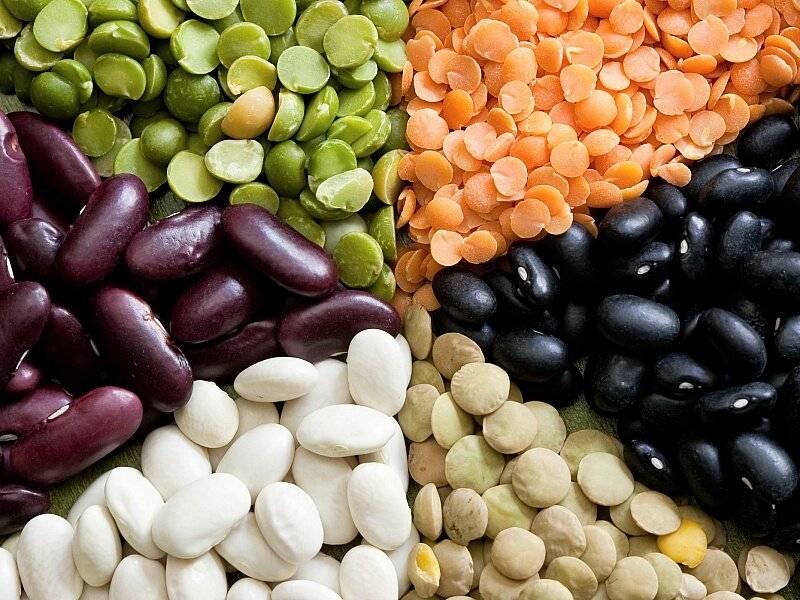 Горох полезные свойства и противопоказания бобов