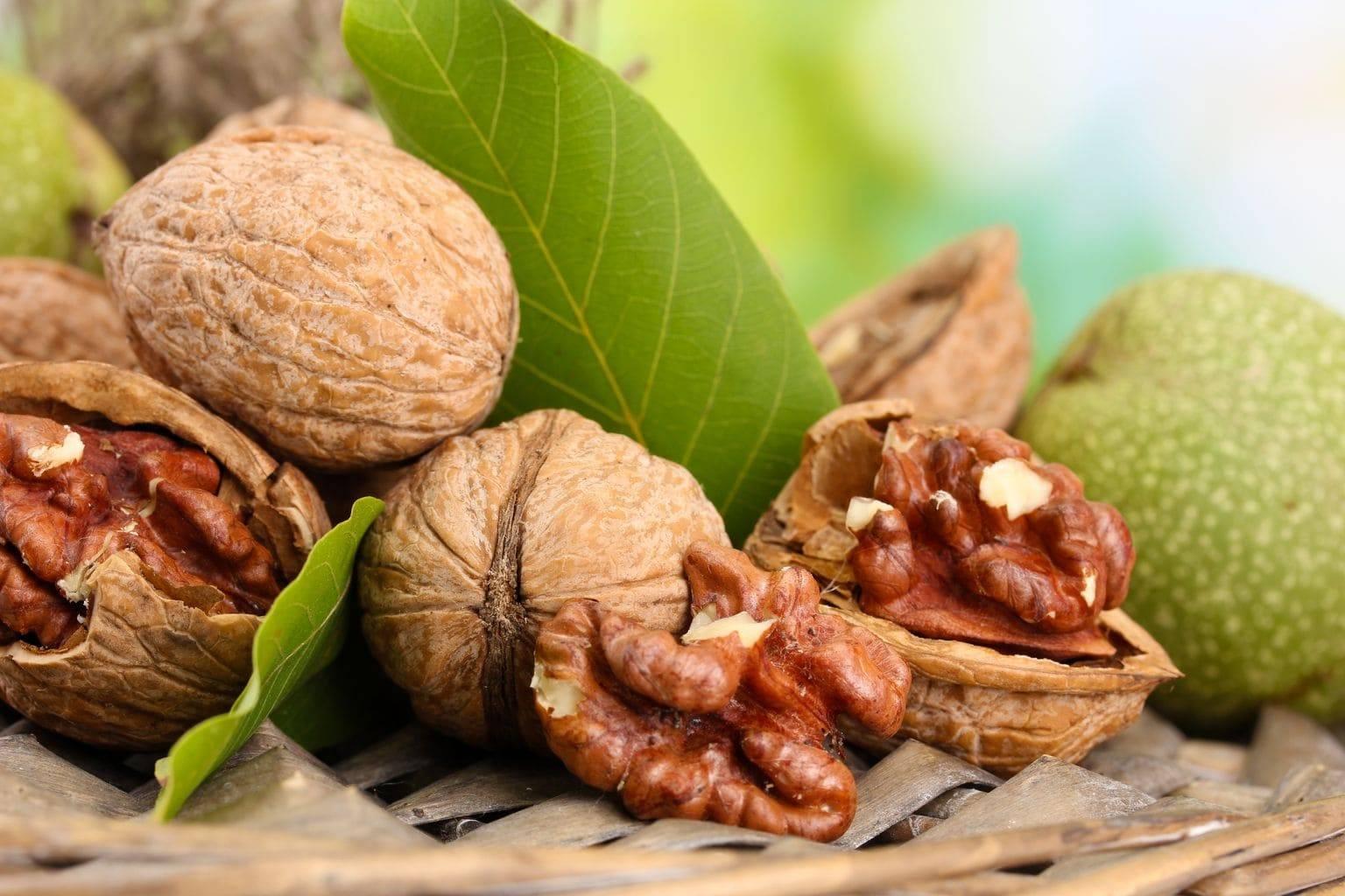 Орехи для сердца: какие ядра полезны для укрепления главной мышцы и сосудов и как влияют на их работу?