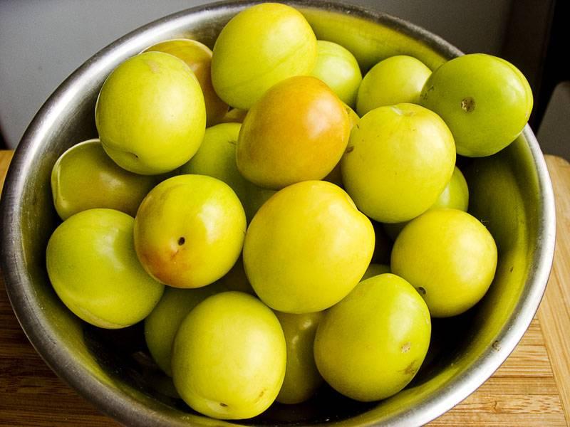 Польза алычи: обзор витаминов, минералов и полезных веществ в составе фрукта. 130 фото алычи и видео описание приготовления варенья и блюд с алычой