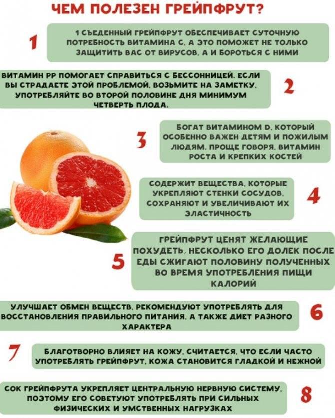 Полезные свойства овощей, ягод и фруктов