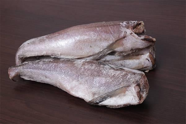 Хек: польза и вред для здоровья. диетическая рыба хек: польза и вред, особенности приготовления продукта