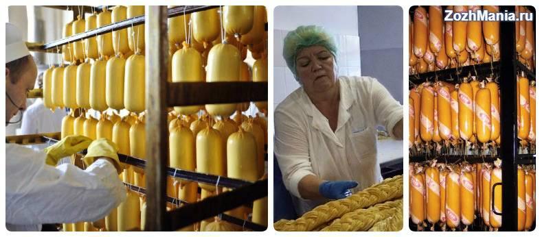 Колбасный сыр: польза и вред для организма, что можно приготовить