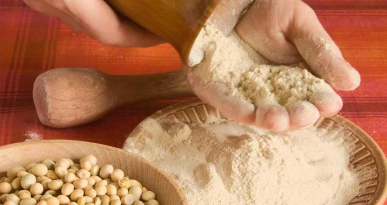Полезные свойства соевой муки и как ее применять в домашних условиях для приготовления выпечки