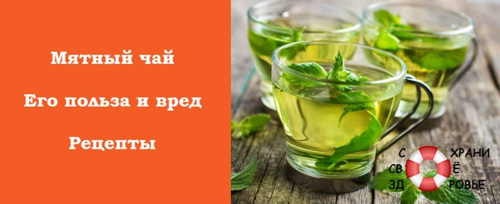 Полезные свойства чая с мятой и его вред