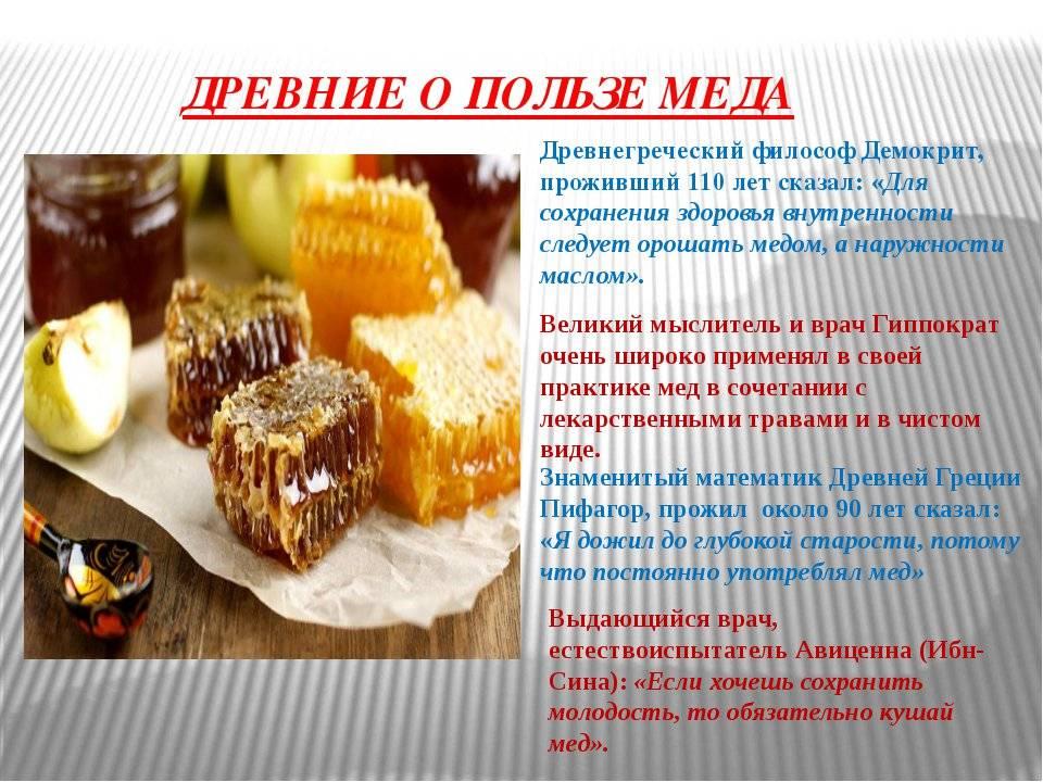 Лечение печени медом: польза и вред «сладкого» лекарства