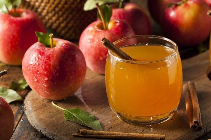 Свежевыжатые соки: польза и вред овощных и фруктовых напитков
