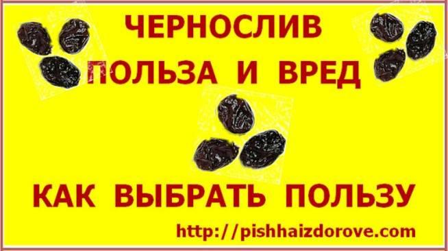 Польза или вред: какими лечебными свойствами обладает чернослив ипри каких противопоказаниях его потребление может быть опасным для вашего организма?