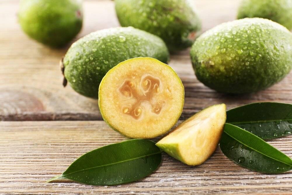 Момордика, гандария, танжерин, джамбоза: необыкновенные тропические фрукты