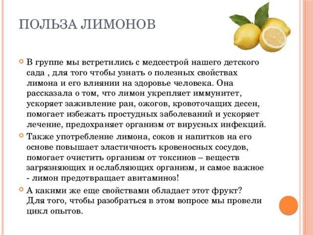 Целительная сила китайского лимонника — обсудим его полезные свойства, лечебный эффект и противопоказания