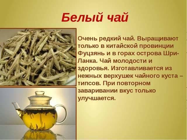 Волшебство белого чая