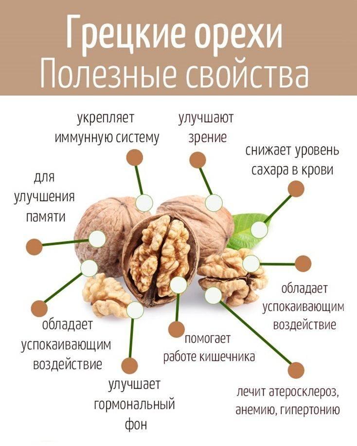Масло грецкого ореха: польза и вред, как принимать