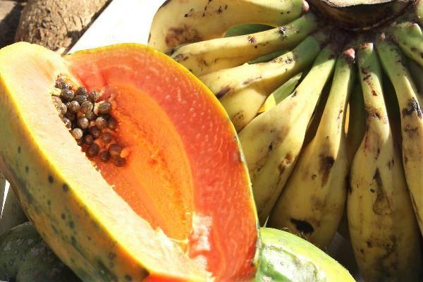 Папайя: полезные свойства и противопоказания