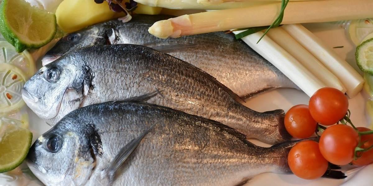 Список самых полезных рыб