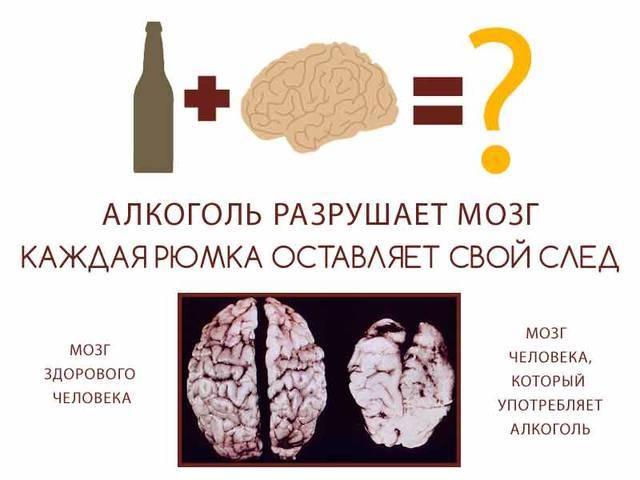 Польза и вред водки для здоровья человека