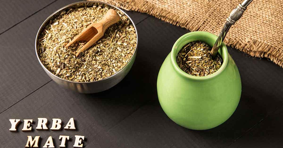 Терпкий и ароматный – чай мате: чем полезен и как правильно его заваривать?