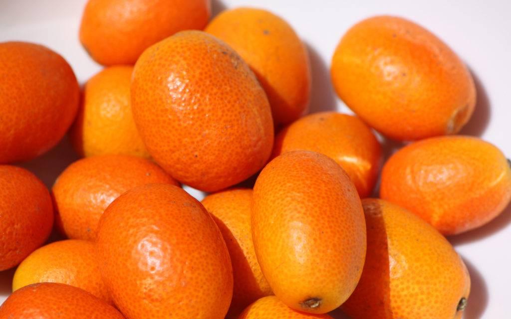 Кумкват: что это за фрукт и в чём его польза