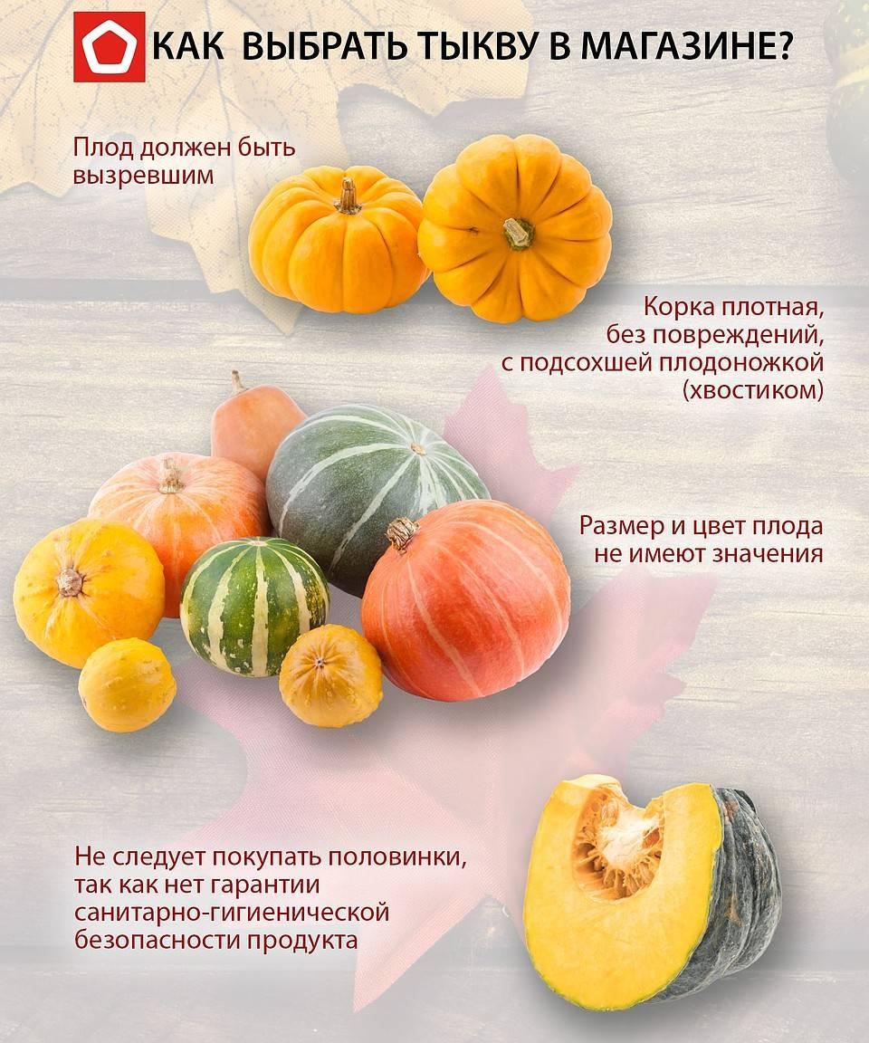 Тыква польза и вред для организма. чем полезна при сахарном диабете, для печени и в снижении веса