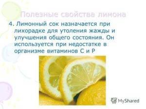 Польза и вред лимона для здоровья организма