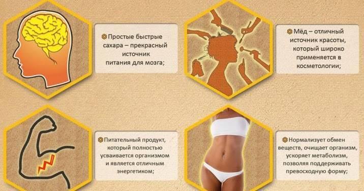 Польза и вред меда для организма женщин и мужчин