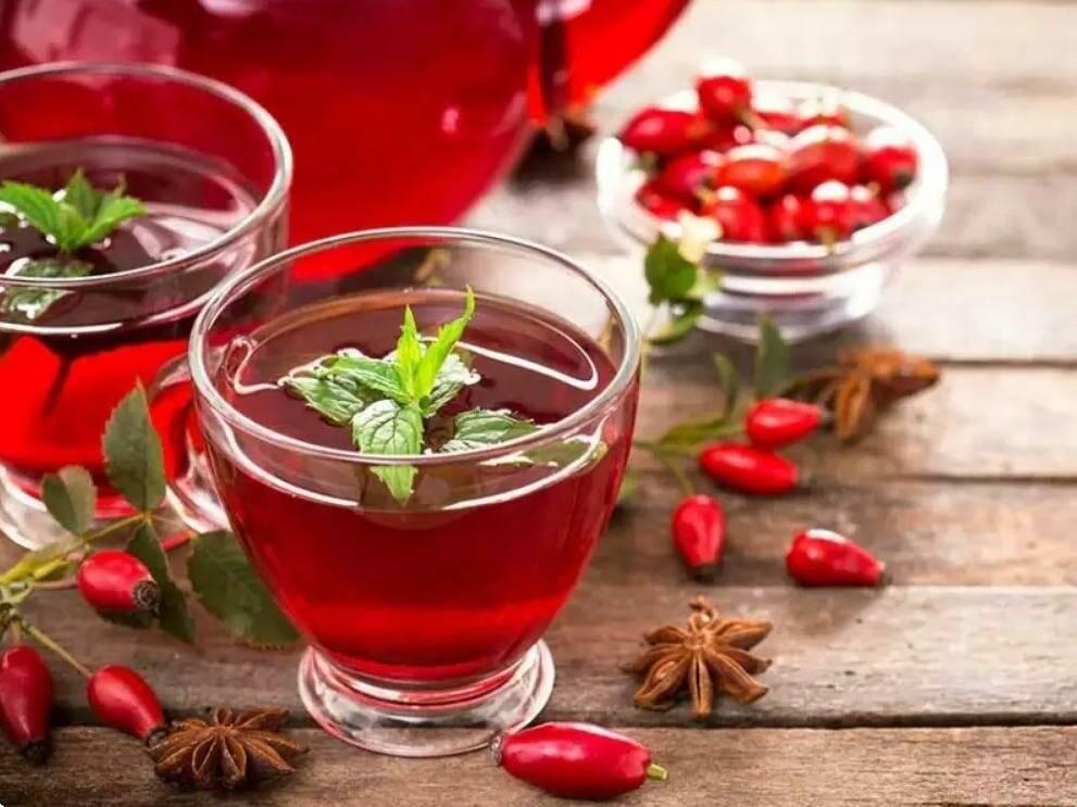 Польза шиповника для организма, сколько можно пить отвара или настоя