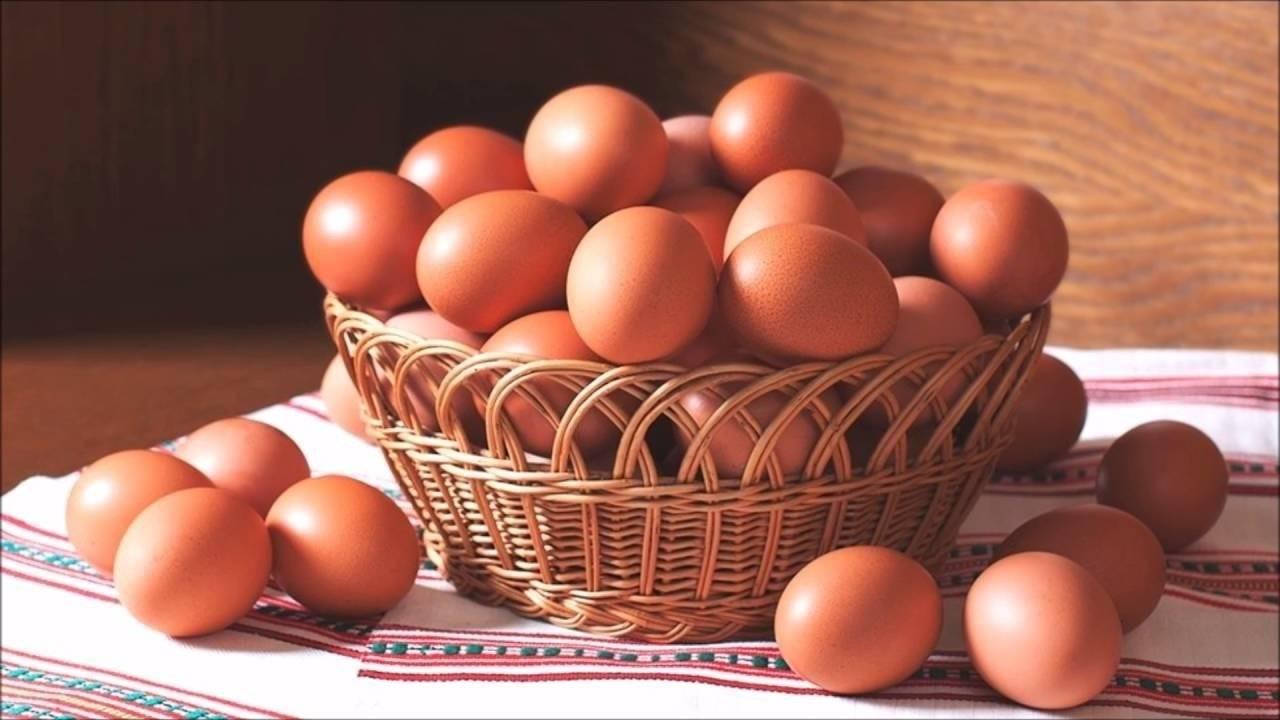 Сырые яйца — польза и вред употребления продукта