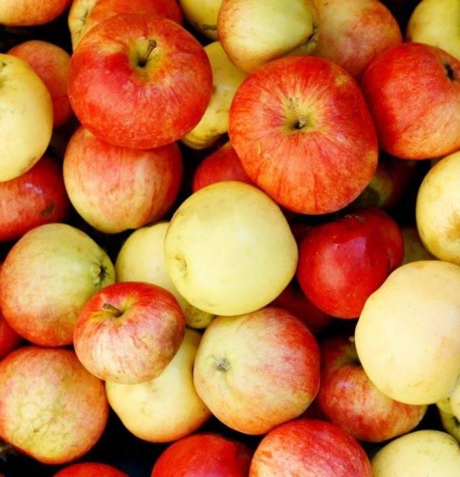 Красные яблоки при грудном вскармливании