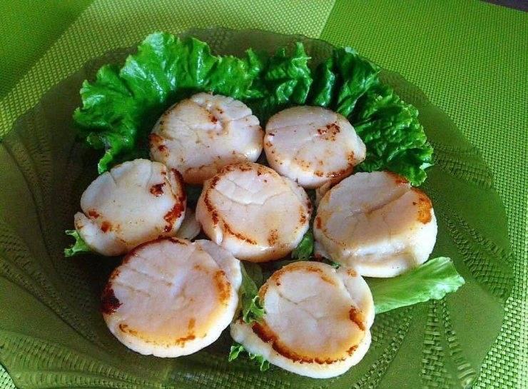 Морские гребешки: состав, полезные свойства. как приготовить морского гребешка