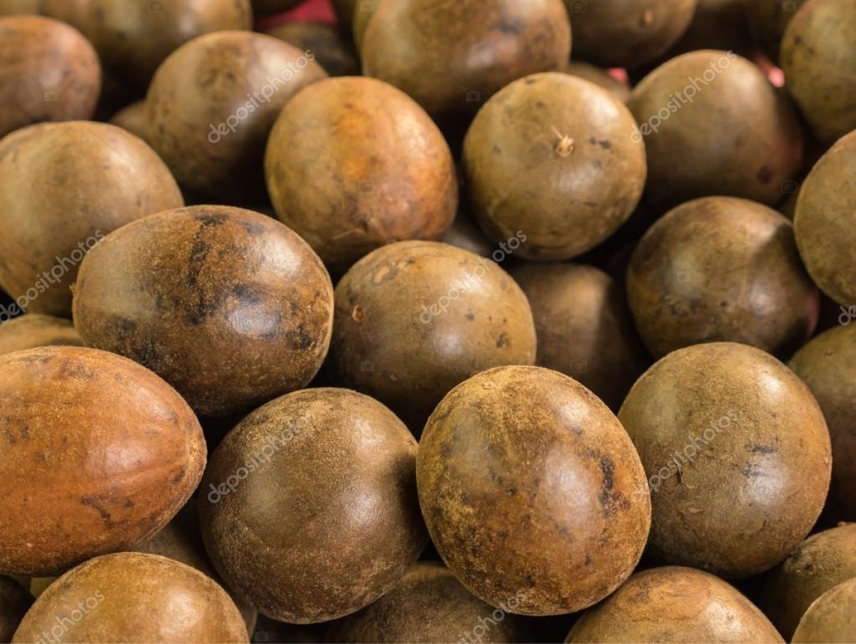 Экзот для тех, кто умеет ждать: выращивание архата и использование его плодов