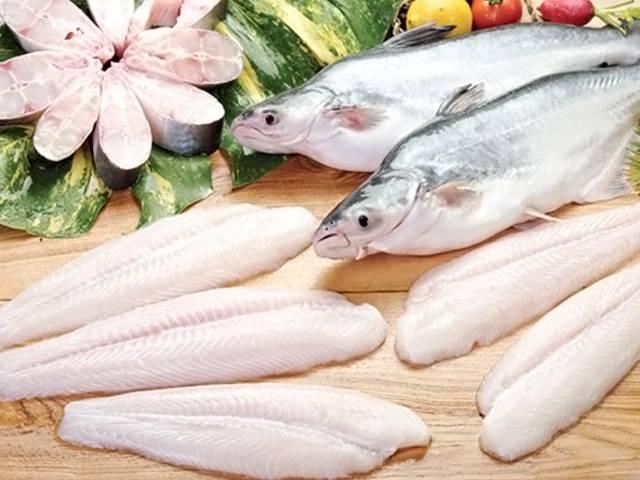 Рыба пангасиус: полезные свойства, вред, приготовление
