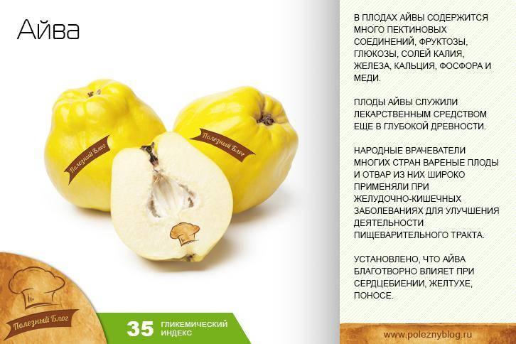 Айва — полезные свойства и противопоказания. как едят айву, рецепты. выращивание айвы