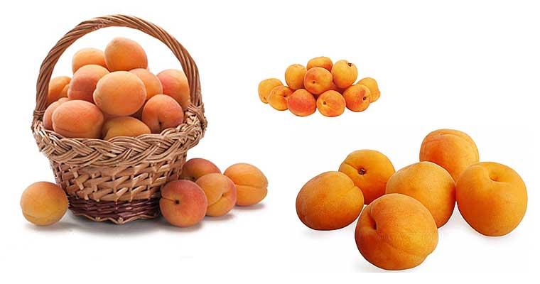 Абрикосы: польза и вред для здоровья плодов, косточек