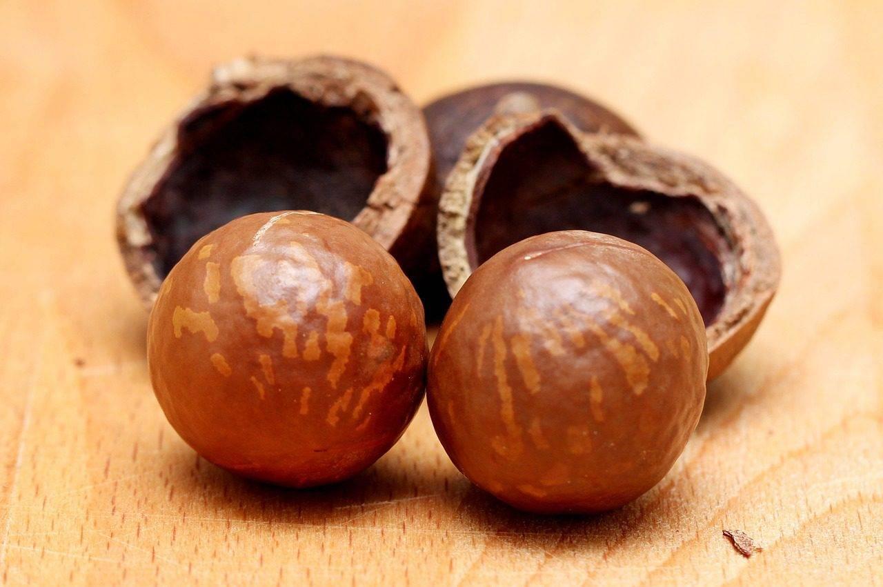 Необычный черный орех: полезные свойства, противопоказания и практические советы по использованию